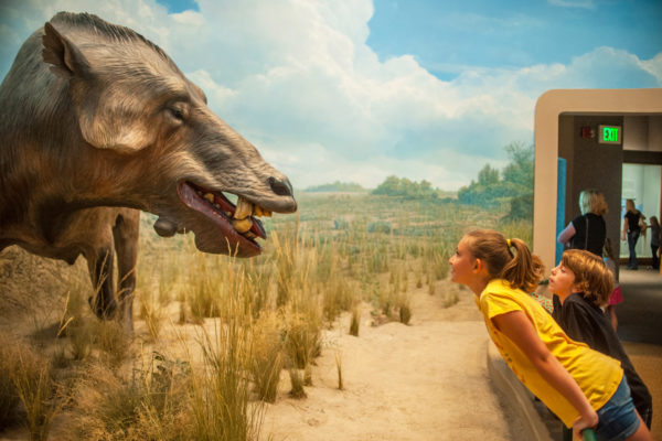 5 Fun Things to Do in Denver with Kids This Spring Break